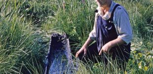 Georg på Vallsjön och stenåldersbåten