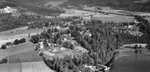 Fröskog 1945