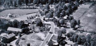 Fröskog i mitten på 50-talet