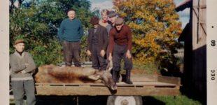 Jaktbilder från förr